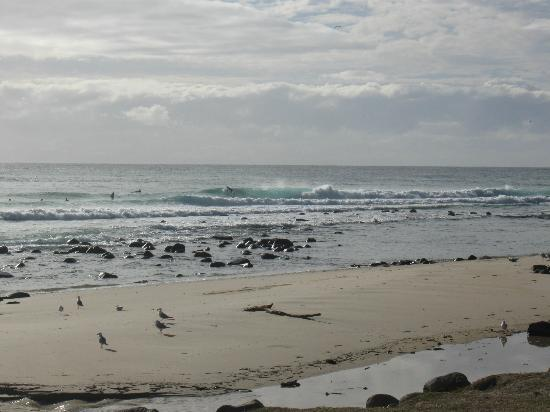 Burleigh Heads Beach: In the surf