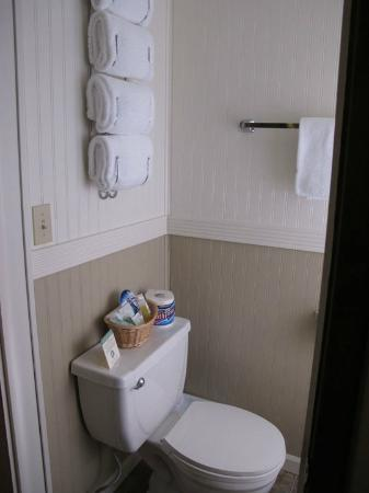 Alpine Motel : Bathroom