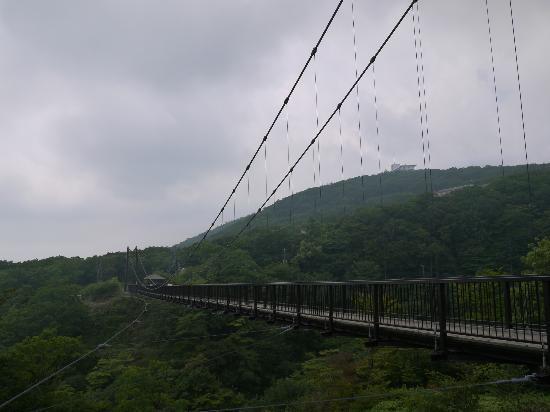 Nasu Highlands : つつじ吊橋