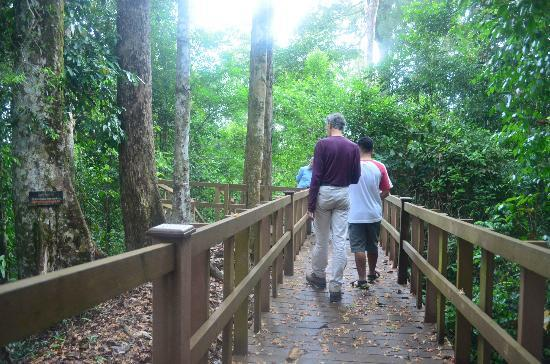 Ulu Ulu National Park Resort: Jungle Walk