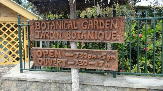 Seychelles National Botanical Gardens: approaching the gardens
