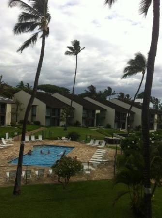 Hale Kamaole: the view from Unit 335