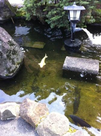 Higashiitabashi Park Children's Zoo