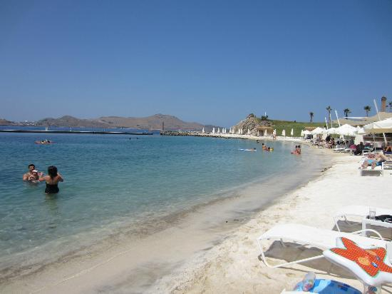 Palmalife Bodrum Resort & Spa: beach area