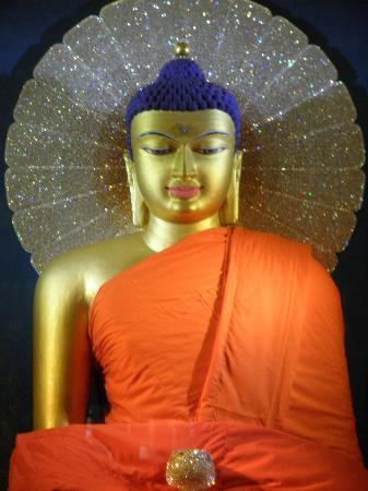 lord buddha picture of mahabodhi temple bodh gaya tripadvisor