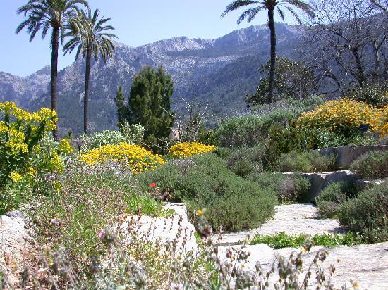 Jardín Botánico de Soller: botanic soller