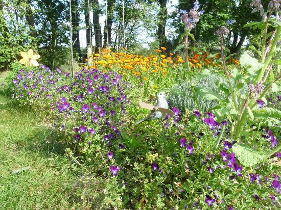 La Caillerie : garden