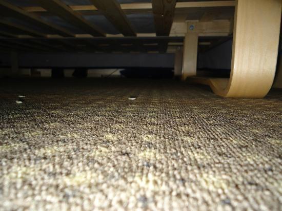 Ascot Hotel: Unter dem Bett