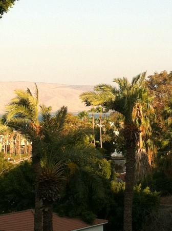 Rimonim Mineral Tiberias: View