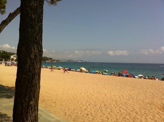 Hotel Bulevard : plage