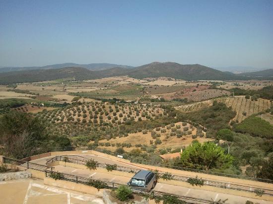 Ghiaccio Bosco: colline