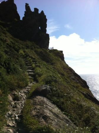 Salcombe to Bolt Head Walk: a section of the cliff top path