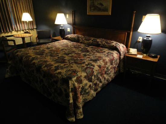 Sidney James Mountain Lodge: Room pic