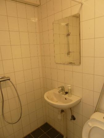 Volsdalen Camping: private restroom