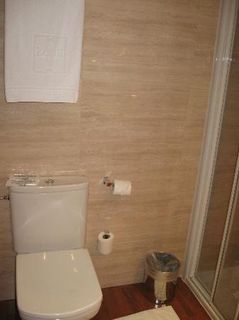 Hotel Zenit Borrell: bagno