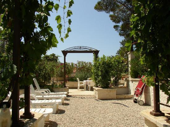 Apartments Villa Olea : Garden
