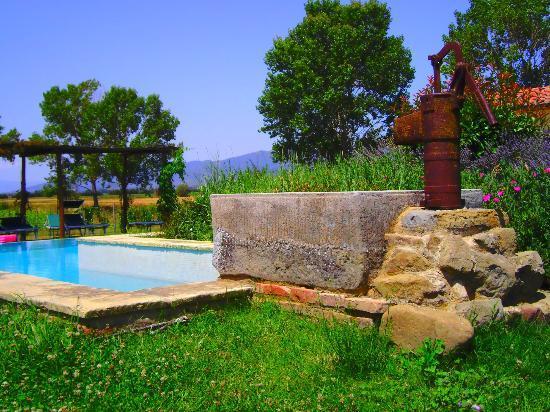 Cortona Resort - Le Terre dei Cavalieri: pool