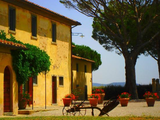 Cortona Resort - Le Terre dei Cavalieri: the house