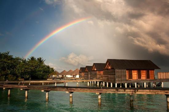 Gangehi Island Resort: RAINBOW