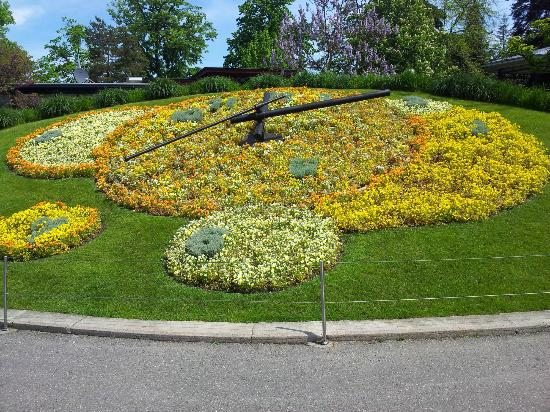 The Flower Clock