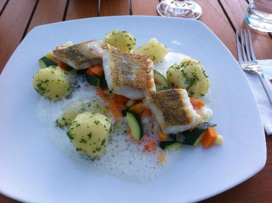 Restaurant Lesage: Lunch Lesage Zanderfilte
