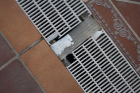 Tucanes Gay: Spritzwasser Abdeckung