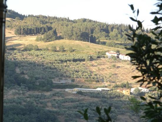 Podere le Pialle: The landscape