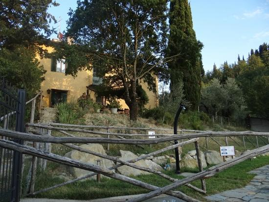 Podere le Pialle: The main house