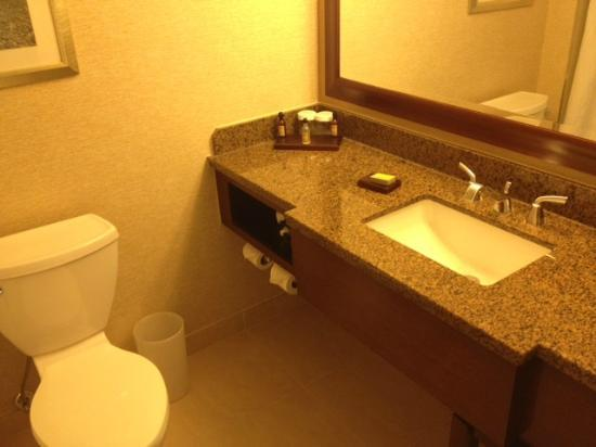 Hanover Marriott: sink/toilet