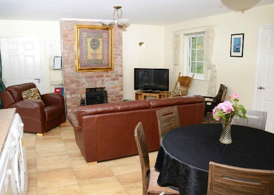 Ballycanal Self Catering: Open plan living area