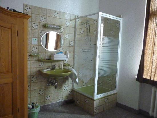 Hotel Pension Margrit: Shower&sink inside the room