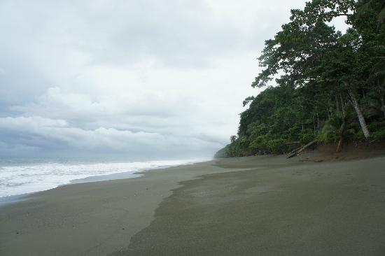 El Remanso Lodge: Ever dreamed about a your own private beach? Here it is!