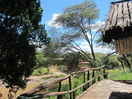 Riverside Camp: landscape