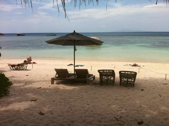Haadtien Beach Resort: on the beach.... 