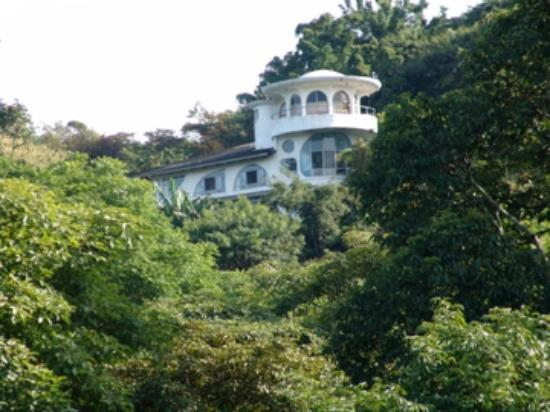 Finca Rosa Blanca Coffee Plantation Resort: FRB from the field