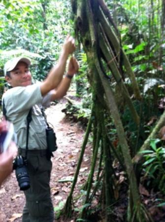 Finca Rosa Blanca Coffee Plantation Resort: Manolo teaching about the rainforest