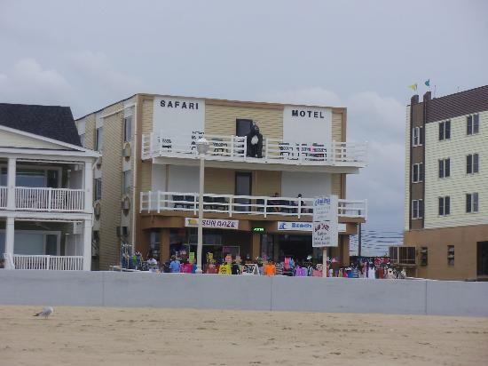 Safari Motel Boardwalk: ocean front of hotel