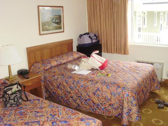 Safari Motel Boardwalk : bedroom