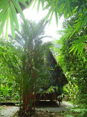 Finca Exotica Ecolodge: Another casita