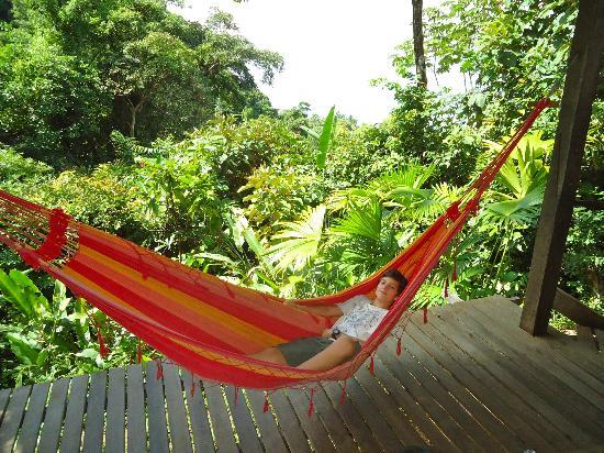 Finca Exotica Ecolodge: Chillaxing with a view