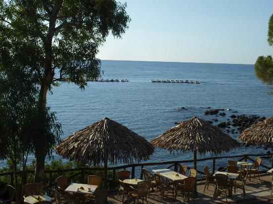 Hotel La Conchiglia : Vista desde la Terraza de la habitación