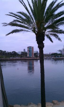 Residence Inn Long Beach Downtown: Picture of the hotel from the bridge