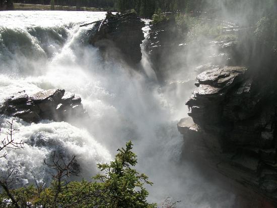 Athabasca Falls: cascade à fort débit