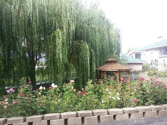 Silver Sage Winery : Outside Garden