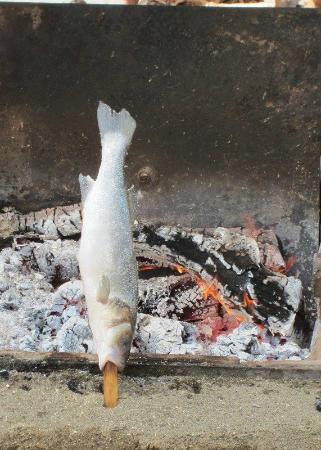 Chiringuito Pepes Bar: Big fishes are also perfectly grilled this way