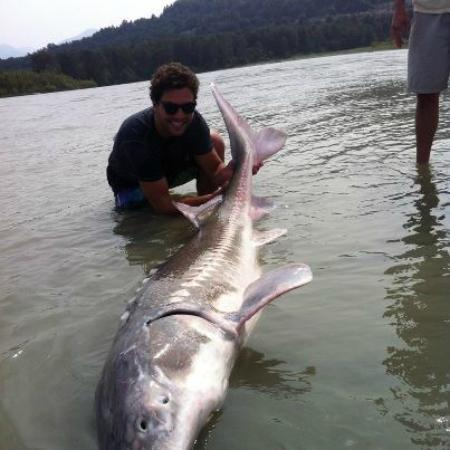 Giant Sturgeon - Picture of Great River Fishing Adventures ...