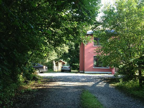 Riverwood House: Part of the driveway
