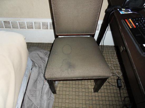 Econo Lodge Inn & Suites Downtown: Ich möchte nicht so gerne darauf sitzen