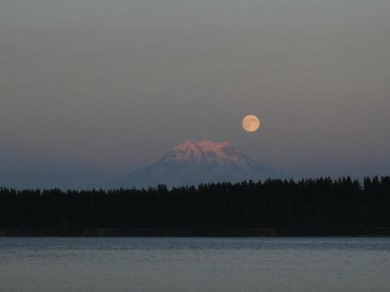 Anderson Island, WA: Moonrise on the beach...
