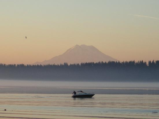 Anderson Island, WA: Sunrise. A fisherman and an Eagle from the beach